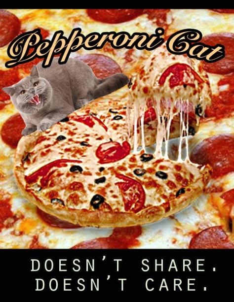 pizzadrip